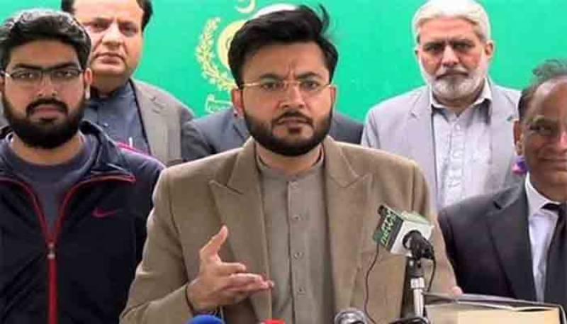 مسلم لیگ (ن) اور پیپلز پارٹی نے اپنے اکاؤنٹس چھپائے ہیں، فرخ حبیب کا دعویٰ