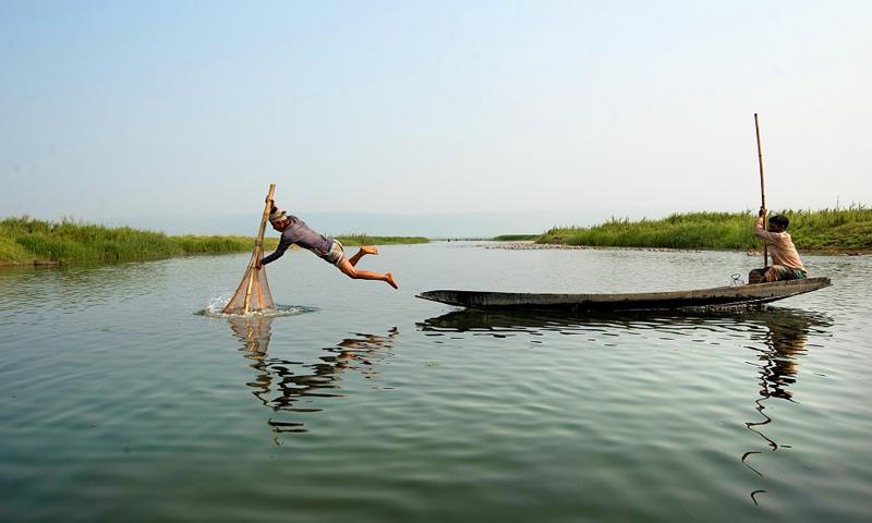 مچھلی پکڑنے کے بنگلادیشی طریقے نےسب کوحیران کردیا