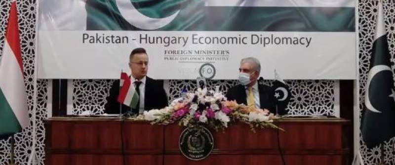 ایف اے ٹی ایف میں سیاسی بنیادوں پر فیصلے کئے جاتے ہیں ، ہنگرین وزیرخارجہ