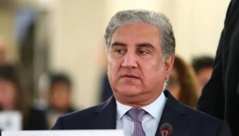 Shah Mehmood Qureshi,OIC,Arab League,palestine
