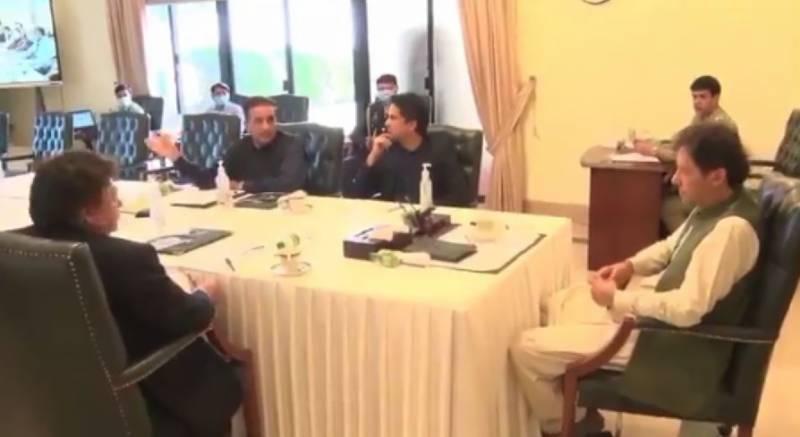وزیر اعظم نے شجرکاری مہم میں ٹائیگر فورس کی مدد لینے کی ہدایت کردی