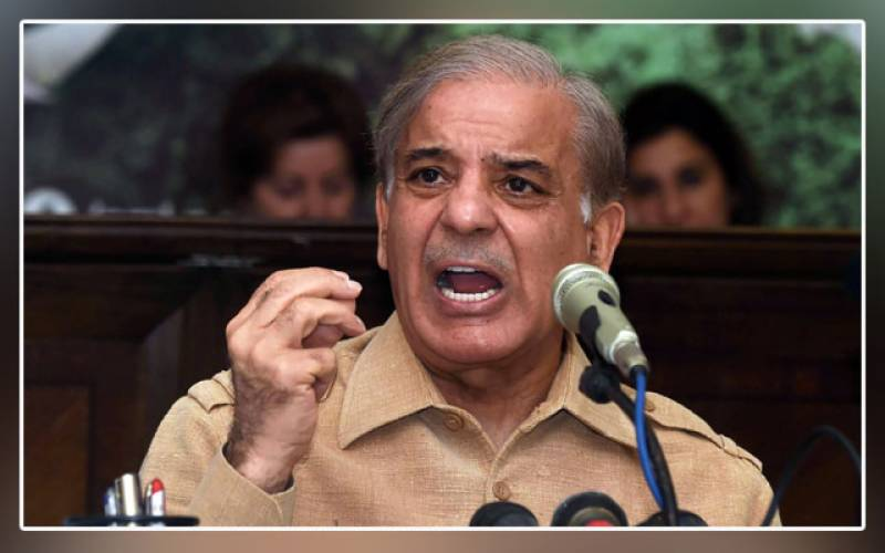 Shehbaz Sharif, PML-N, prices, petroleum products, PTI government