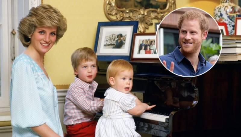 Prince Harry,Lady Diana,Prince William,Prince Harry Writing Book