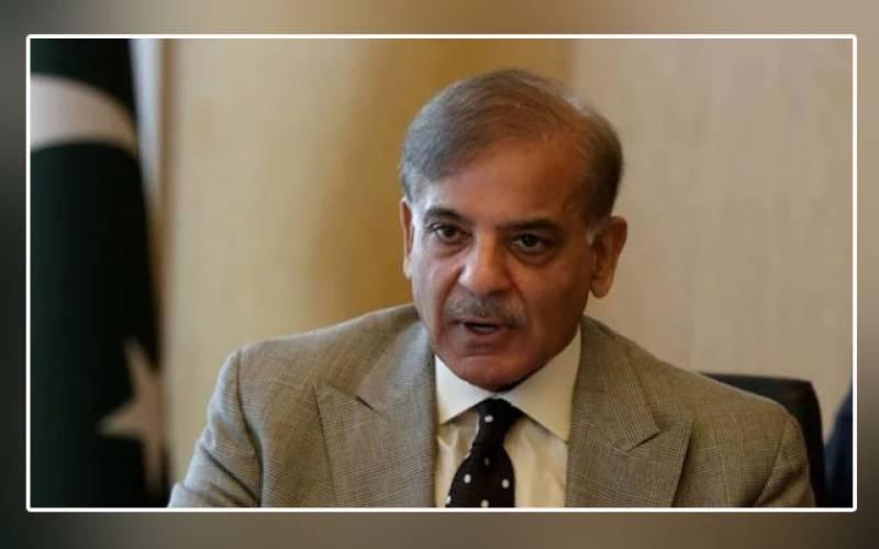 Ali Amin Gandapur, statement, Maryam Nawaz, shameful, Shehbaz Sharif