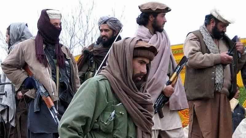 ٹی ٹی پی افغانستان سے پاکستان میں دہشت گردی کی کارروائیاں کر سکتی ہے، اقوام متحدہ