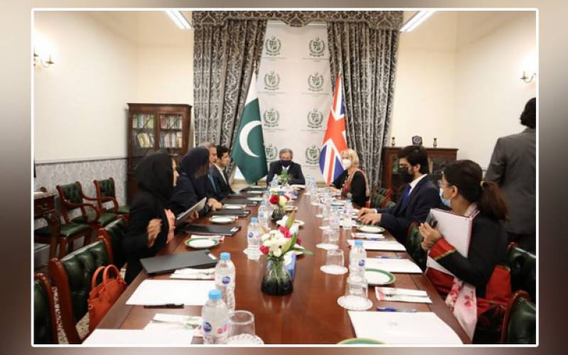 Pakistani delegation, Shafqat Mahmood, London, British Education Minister