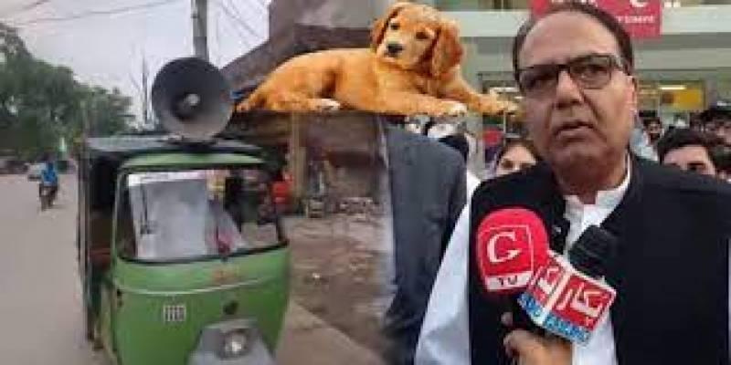انتظامیہ کی بڑی کامیابی، کمشنر گوجرانوالہ کا کتا تلاش کرلیا