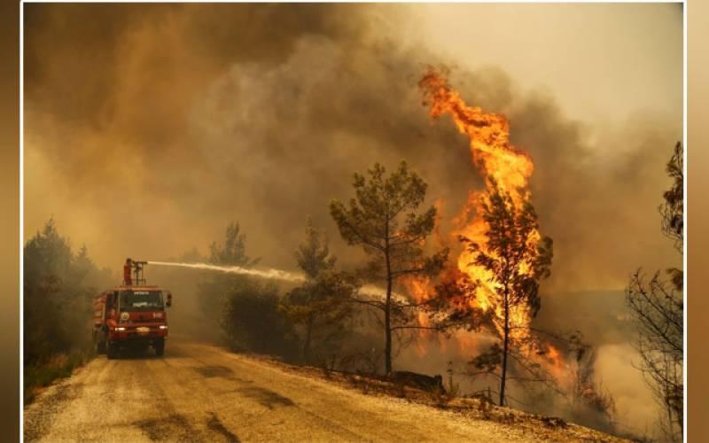 Seven people, wildfires, Turkey, evacuation, villages, hotels, President Tayyip Erdogan