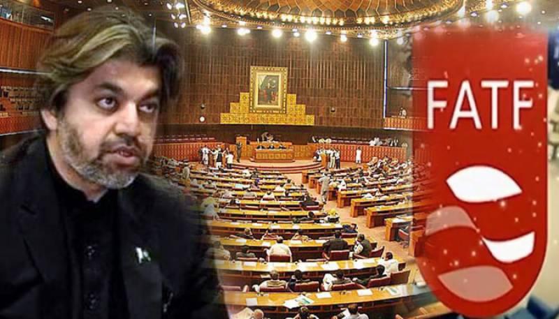 FATF,FATF Pakistan,Ali Muhammad Khan,National Assembly