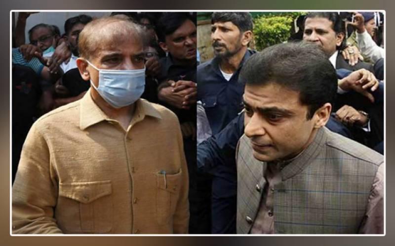 Sugar inquiry, money laundering case, extension, interim bail, Shehbaz Sharif, Hamza