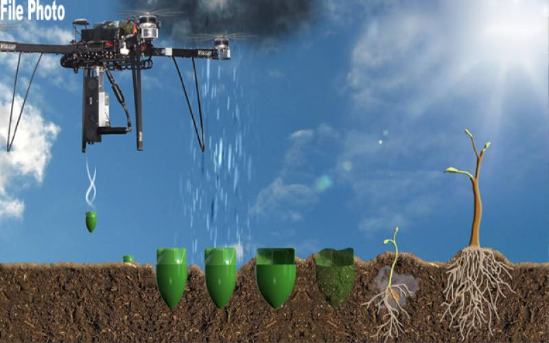 Forest Department, Pakistan, first drone seeding, experiment, PTI government