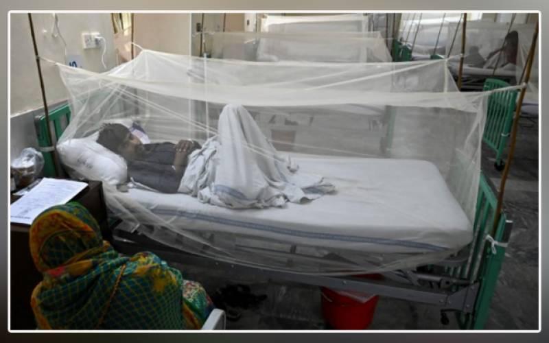 Dengue cases, Pakistan, PTI government, Usman Buzdar, Imran Khan