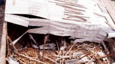 ایبٹ آباد: بوسیدہ مکان کی چھت گرنے سے 3 بچیاں جاں بحق، 2 افراد زخمی