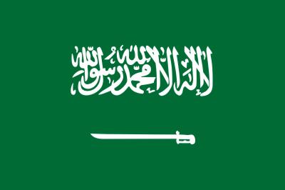 سعودی فرمانروا شاہ سلمان بن عبدالعزیز کے بھائی شہزادہ ترکی بن عبدالعزیز آل سعود انتقال کرگئے