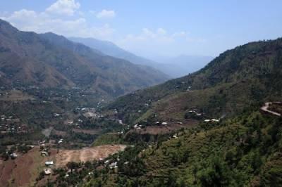 چناری رینج میں جنگلات کے دو سو کنال رقبہ پر قبضہ مافیا سرگرم