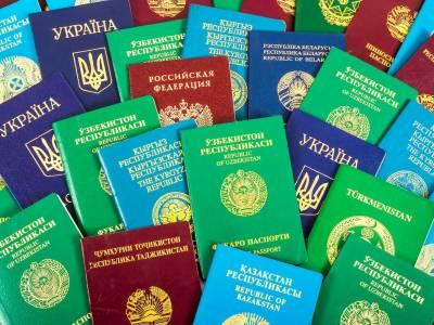 دنیا میں کتنے رنگ کے پاسپورٹ ہوتے ہیں?