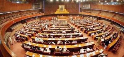 قومی اسمبلی نے رئیل اسٹیٹ سیکٹر کے لیے ایمنسٹی اسکیم کی منظوری دے دی۔