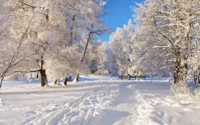 شدید سردی کی انٹری :دسمبر کے شروع ہوتے ہی جاڑےنے اپنا رنگ دکھا دیا