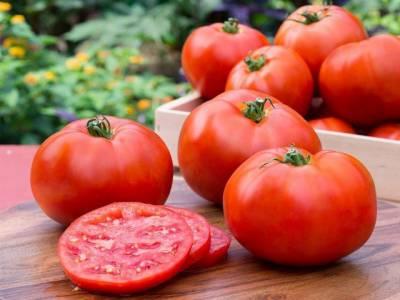 ٹماٹر کا استعمال کینسرسمیت 6 خطرناک بیماریوں سے بچاتا ہے، ماہرین
