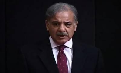 یوٹرن مارنے والے شکست خوردہ عناصر پاکستان کی ترقی کا یوٹرن چاہتے تھے :شہبازشریف
