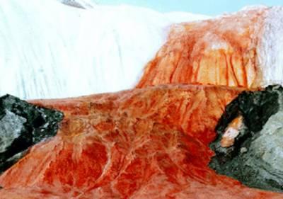 خون کے آنسو بہاتا برف کا پہاڑ