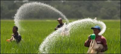 حکومت نے کھاد پر سبسڈی ختم کردی ، پیپلزپارٹی کا احتجاج