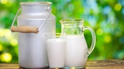 اونٹنی کا دودھ کتنا مفید ہے ،جانیئے ماہرین کی رائے