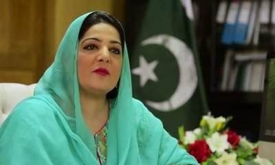 مسلم لیگ ن کے رہنماؤں نے عمران خان اور جہانگیر ترین کو جھوٹا قرار دیدیا