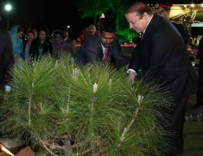 وفاقی حکومت کے زیراہتمام نیشنل گرین ڈے ،وزیراعظم نے افتتاح کیا