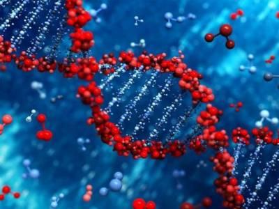 ڈی این اے بدل کر زندگی بھر کولیسٹرول سے چھٹکارا ممکن