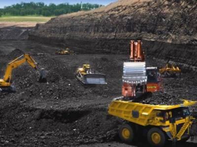 سندھ ، صحرائے تھر میں لکڑی کے کوئلے سے ماحول متاثر