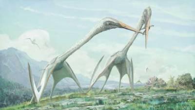 ایسا پرندہ جو ڈائنو سار کا بھی شکار کرسکتا تھا