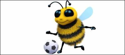 شہد کی مکھیاں بھی فٹ بال کھیل سکتی ہیں