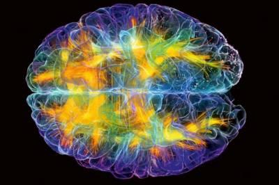 موت کے بعد انسانی دماغ دس منٹ سے زیادہ زندہ رہتا ہے: تحقیق