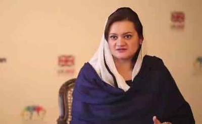 پاکستان نے دہشتگردی کیخلاف جنگ جس طرح لڑی کوئی اور نہیں لڑا، مریم اورنگزیب