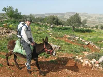 فلسطین میں یونیورسٹی کے طلباء نے 'گدھا ٹرانسپورٹ سروس شروع کردی