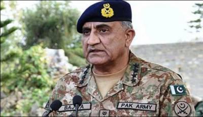 پاکستان کو فسادیوں سے پاک کرنا ہے: آرمی چیف