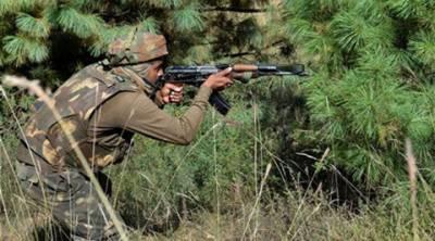 بھارت کی لائن آف کنٹرول پر بلا اشتعال فائرنگ ، 2 شہری زخمی