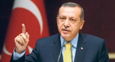 جرمنی گولن تنظیم کے کارکنوں کی پناہ کے لئے بہترین جگہ ہے،ترک وزیراعظم