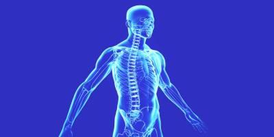 انسانی جسم کے بارے میں ایسی حیران کن معلومات جو آپ کبھی نہیں جانتے تھے