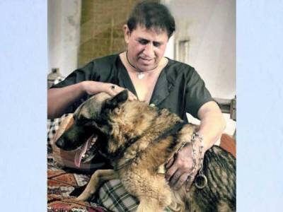 شفقت چیمہ شوٹنگ کے دوران کتے کی درندگی کا شکار