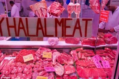 ہلال خوراک کی عالمی تجارت کاحجم ایک کھرب 60ارب ڈالر تک بڑھ جائے گا
