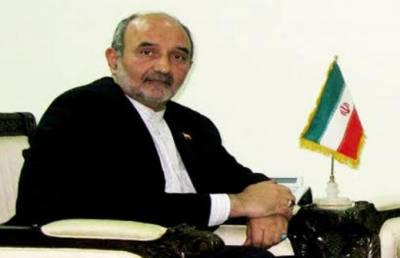 ایران ، پاکستان کے اندر کارروائی کا کوئی ارادہ نہیں رکھتا،مہدی ہنر دوست