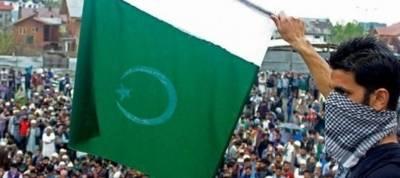 سیاحتی مقام پر سبز ہلالی پرچم لہرانے کے الزام میں 9 کشمیری نوجوان گرفتار