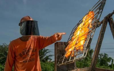 تھائی لینڈ: شیف نے سورج کی شعاعوں سے چکن روسٹ کر لیا
