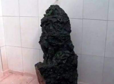 31 ارب روپے سے زائد مالیت کا ''سبز فیروزہ''