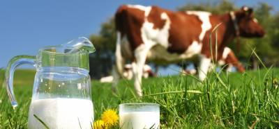 گائے کا دودھ نہ پینے والے بچوں کا قد چھوٹا رہ جاتا ہے' طبی ماہرین