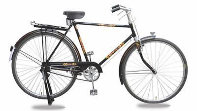 سائیکل کی ایجاد کو 200 سال مکمل