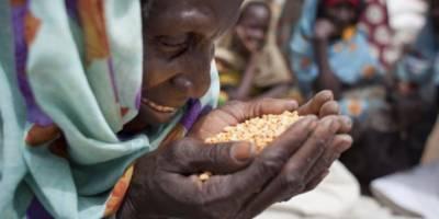 پاکستان میں سالانہ چالیس فیصد خوراک ضائع ہونے کا انکشاف