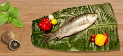 ہفتے میں 2 بار مچھلی کھانے کا زبردست فائدہ